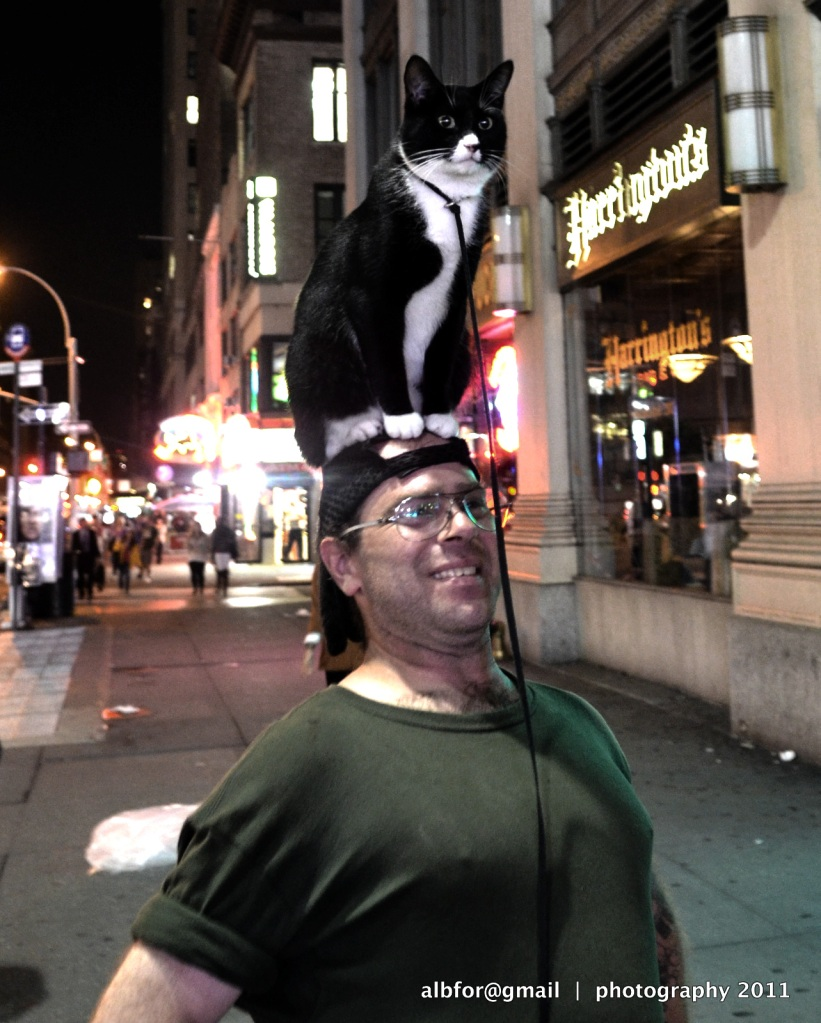 Cat-with-Man,-7th-avenue-3772-upload-One!